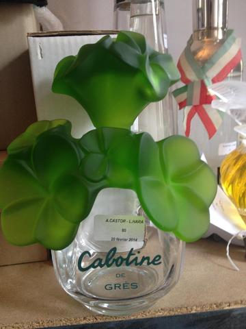 GRES cabotine, 25cm 80/100€